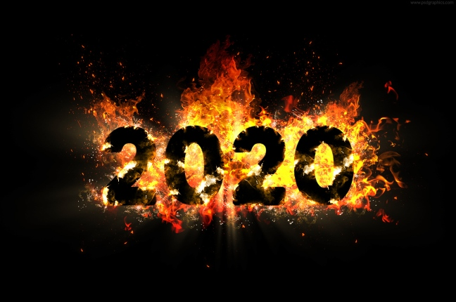year-2020-in-flames